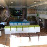 Autobuses para publicidad - SerbeCar
